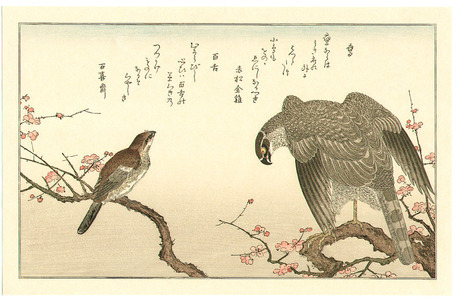 Kitagawa Utamaro: Hawk and Shrike - Artelino