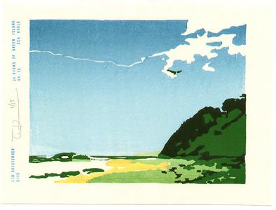 Tom Kristensen: 36 Views of Green Island - 13 - Artelino