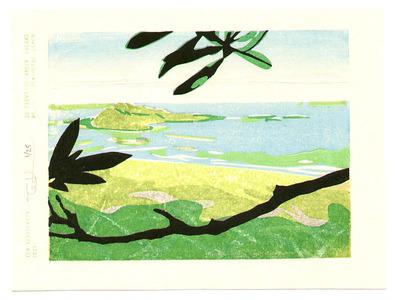 Tom Kristensen: 36 Views of Green Island - 1 - Artelino