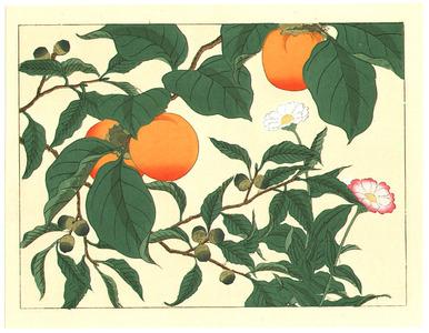 Sakai Hoitsu: Persimmons and Flowers - Artelino
