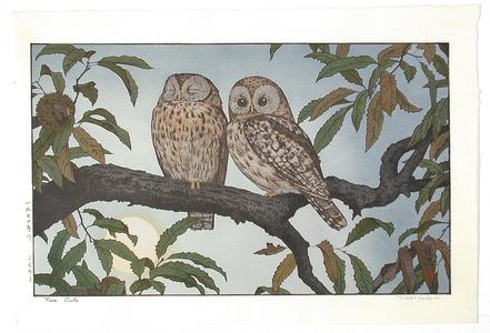 吉田遠志: Two Owls - Artelino