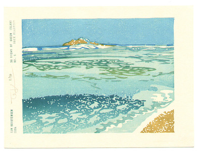 Tom Kristensen: 36 Views of Green Island - 5 - Artelino