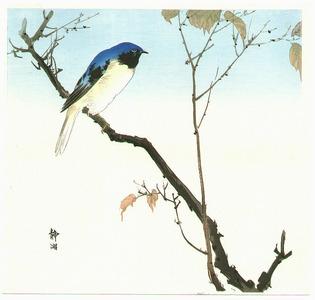 Seiko: Blue Bird on a Branch - Artelino