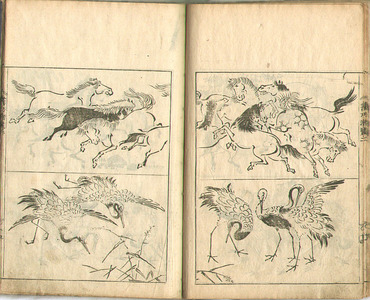 Kano Tanyu: Book of Drawings - Gako Senran - Artelino