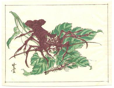 Kawanabe Kyosai: Lobster - Artelino
