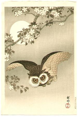 小原古邨: Flying Owl - Artelino