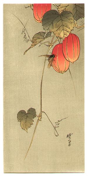 Kawanabe Gyosui: Bee and Red Fruits - Artelino