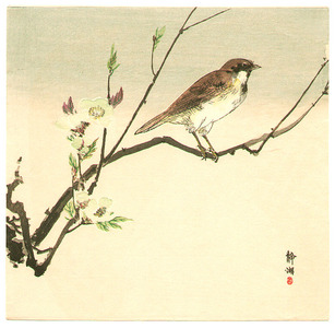 静湖: Bird and White Blossoms - Artelino