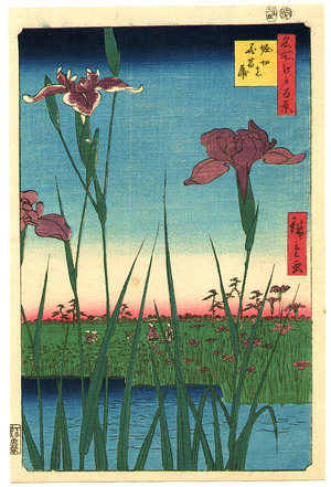 Utagawa Hiroshige: Iris Garden at Horikiri - One Hundred Famous Views of Edo - Artelino