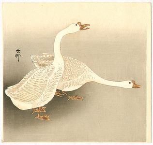 Ohara Koson: Two White Geese - Artelino
