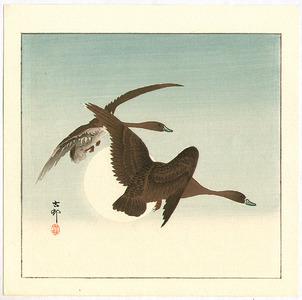 Ohara Koson: Two Geese and the Moon - Artelino