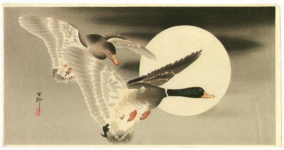 Ohara Koson: Two Ducks and the Moon - Artelino