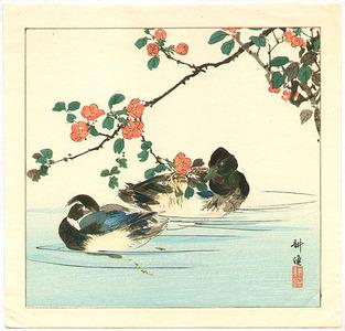 月岡耕漁: Two Mallard Ducks in Water - Artelino