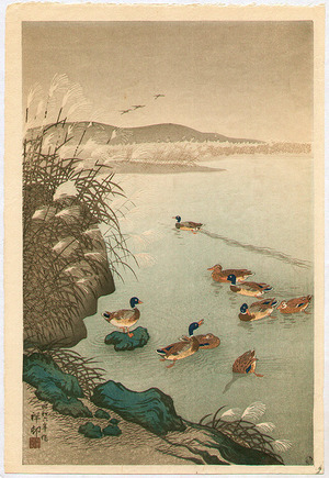 小原古邨: Pond in Late Autumn - Artelino