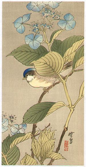 Kawanabe Gyosui: Blue Bird on a Blossoming Branch - Artelino