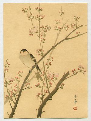 Imao Keinen: Bird on Cherry Tree - Artelino