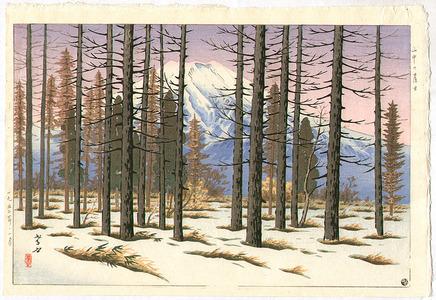 Henmi Takashi: Mt. Fuji from Yamanaka - Artelino