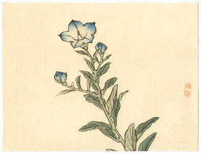幸野楳嶺: Blue Bell Flowers - Artelino