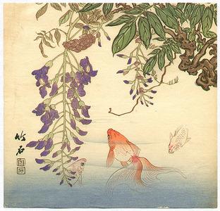 長町竹石: Goldfish and Wisteria - Artelino