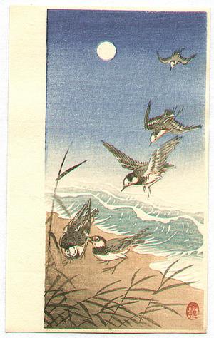 Ohara Koson: Birds Landing on a Seashore - Artelino