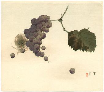 Watanabe Seitei: Mouse and Grapes - Artelino