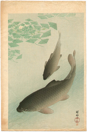 Ohara Koson: Two Carp and Blooming Water Plants - Artelino