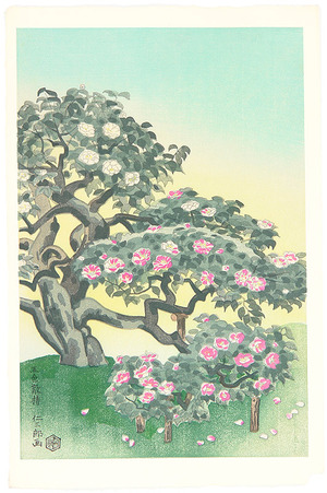 Ito Nisaburo: Five-Colored Camellia - Artelino