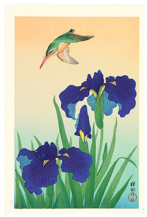 小原古邨: Iris and Kingfisher - Artelino