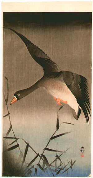 Ohara Koson: White-fronted Goose - Artelino