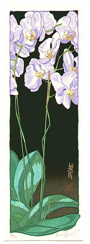 Paul Binnie: Orchid Night - Artelino