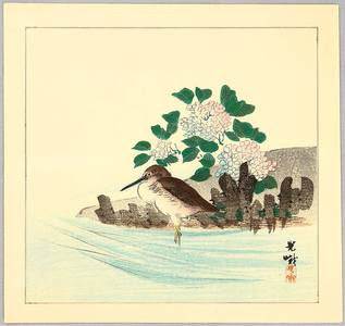 Iijima Koga: Snipe and Hydrangea - Artelino