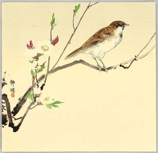 静湖: Bird and White Plum - Artelino