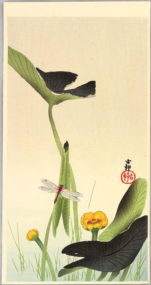 小原古邨: Dragonfly and Lotus - Artelino