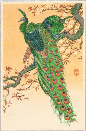 Ohara Koson: Peacock and Peahen on Branch - Artelino