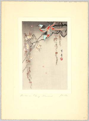 Watanabe Seitei: Two Birds on Cherry Blossoms - Artelino