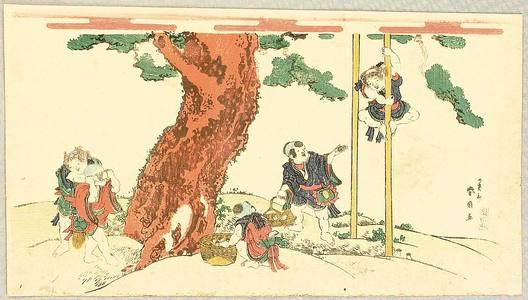 Katsukawa Shunsen: Children and Pine - Artelino