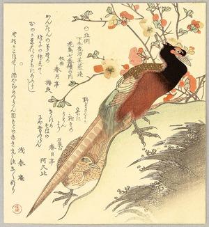 Kubo Shumman: Two Pheasants and Plum - Artelino