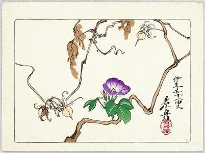 柴田是眞: Morning Glories - Hana Kurabe - Artelino