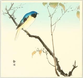 静湖: Blue Bird on a Branch - Artelino