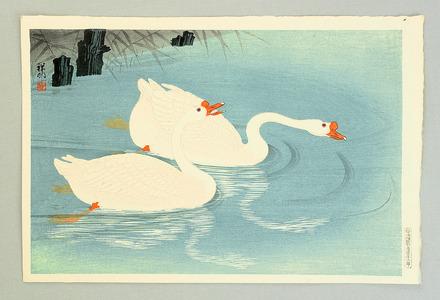 Ohara Koson: Two Swans - Artelino