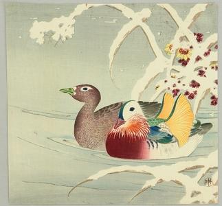 長町竹石: Mandarin Ducks - Artelino