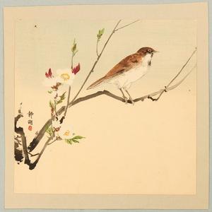 Seiko: Bird and White Plum - Artelino