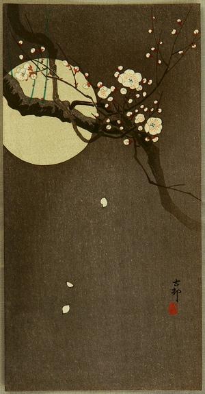 Ohara Koson: Flowering Plum and Moon - Artelino