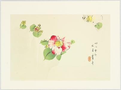 Watanabe Seitei: Camellia - Artelino