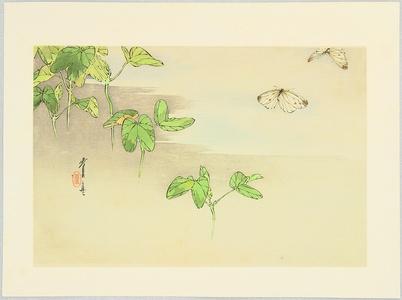 Watanabe Seitei: Butterflies and Water Plants - Artelino