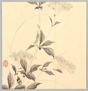 Imao Keinen: Grasshopper and Autumn Flower - Artelino