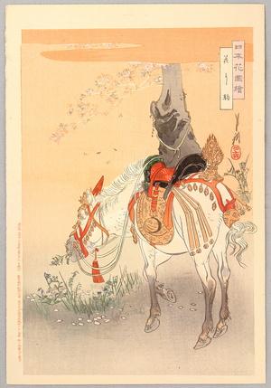 尾形月耕: Horse and Cherry Blossoms - Flowers of Japan - Artelino