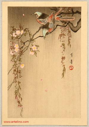 Watanabe Seitei: Two Birds and Cherry Tree - Artelino