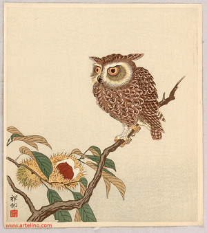 小原古邨: Owl and Chestnut - Artelino
