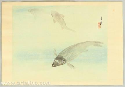 Ogata Gekko: Carp in Water - Artelino